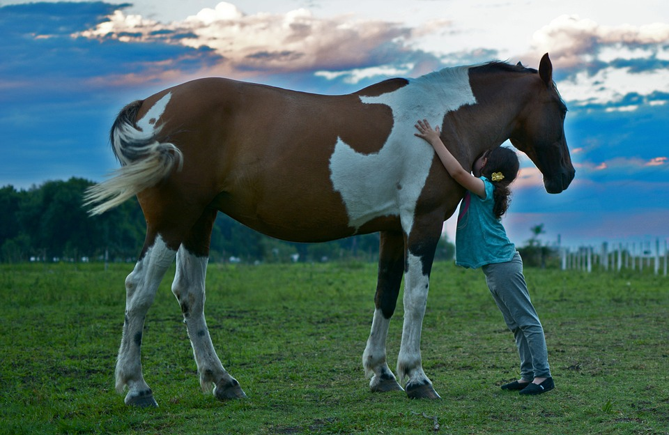 extraescolar equitación para niños
